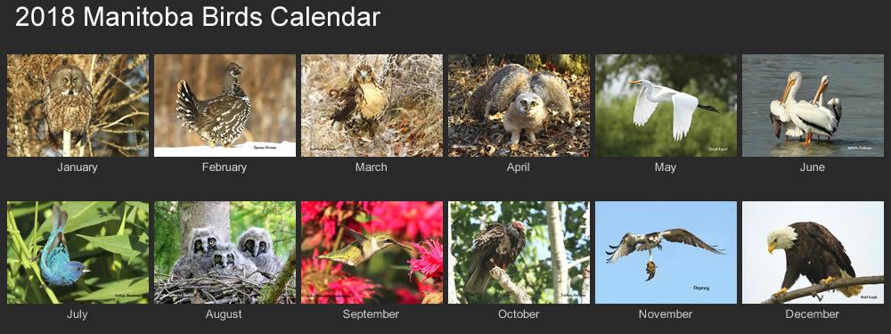 2018 manitoba birds calendar